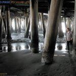 Richard Page - Peculiar Life